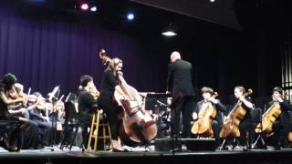 Elegy by Giovanni Bottesini for Double Bass and String Orchestra
