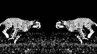 No Wyld - ODYSSEY (Official Lyric Video)