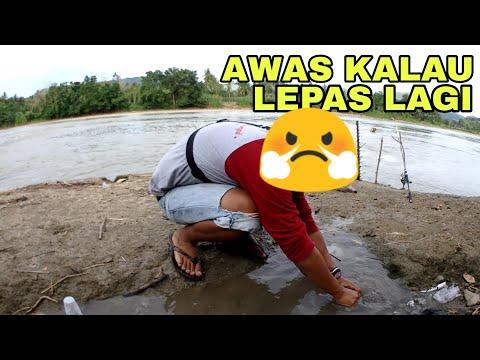 AMPUN DEHH !! Niat Mau Release Ikan Malah Jadinya Kayak Gini !!!