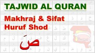 Belajar Tajwid 21: Makhraj & Sifat Huruf Shod صَ | Tahsin | Aisar | Ustadz Abu Hamid Fauzi Bin Isnen