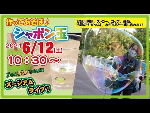 沖縄こどもの国ズージアムライブ【つくってあそぼ♪科学工作「シャボン玉」】