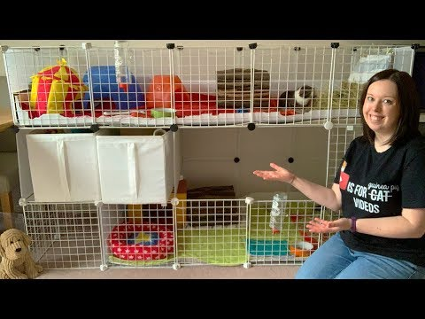 How I Built my Tiered Guinea Pig C&C Cage