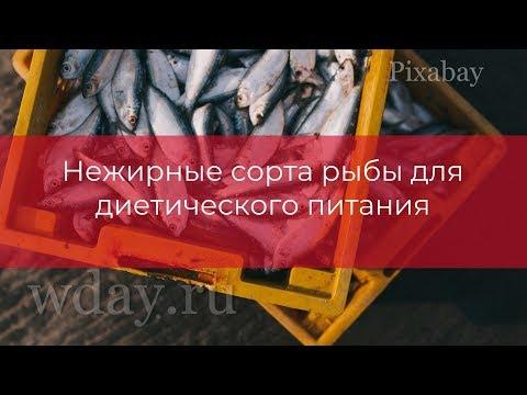 Нежирные сорта рыбы для диетического питания