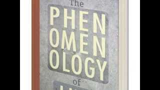 Warren Lehrer's A-LIFE-IN-BOOKS — Book 10: The Phenomenolgy of Lint