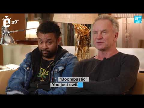 Sting and Shaggy in the hot seat!