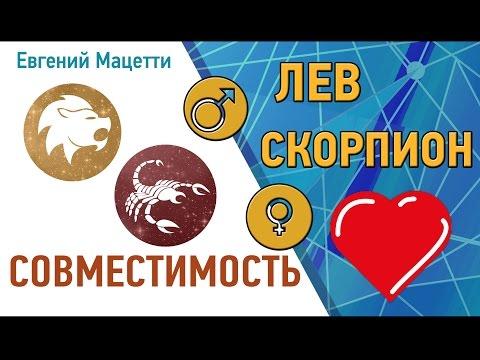 Любовный гороскоп для женщин львов на август 2016