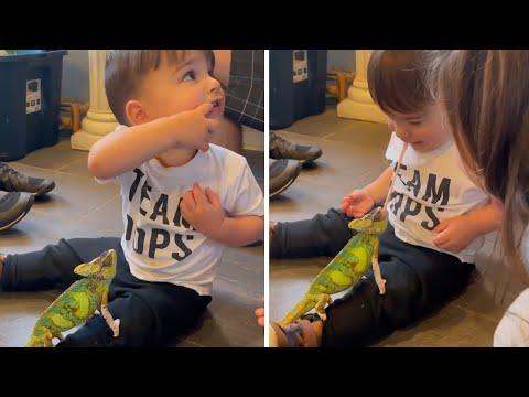 ילד קטן וחמוד במפגש מצחיק עם זיקית