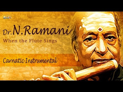 Evergreen Carnatic Instrumental Flute | Best Of Dr.N.Ramani | Classical Music | Thyagaraja