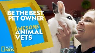 Be the Best Pet Owner | Awesome Animal Vets