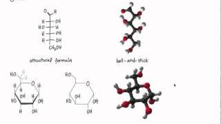 Representing Molecules.mp4