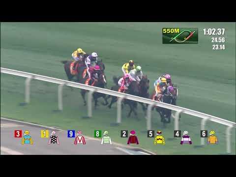 2020/4/26(日) 香港チャンピオンズマイル(G1)
