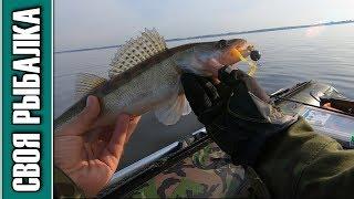 Отчет о рыбалке в дубне