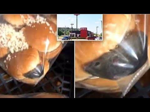 Diese kleine Maus hatte sich zwischen Burgerbrötchen in einem Fastfood Restaurant in Oklahoma verst