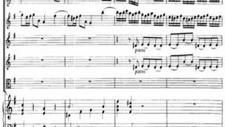 [Classic] Telemann: Concerto for Flute & Recorder & Strings in e, TWV 52:e1