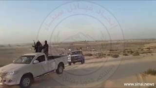 اتحاد قبائل سيناء يمشط مناطق الظهير الصحراوي والمدقات الجبلية في العملية الشاملة