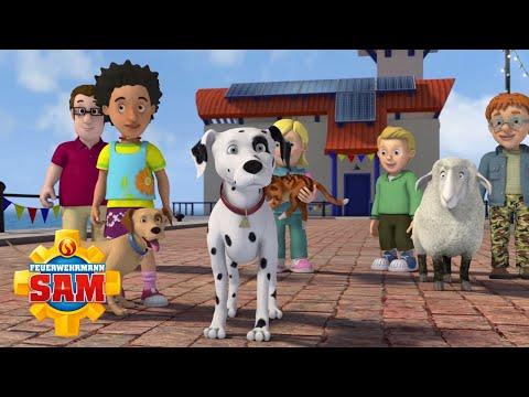 Pontypandy Tierrennen! | NEUE Folgen | Feuerwehrmann Sam | Cartoons für Kinder