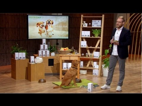 Nutriday: Neuartiges Ergänzungsfutter für Hunde
