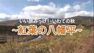 いい旅みっけ!・いわての秋~紅葉の八幡平~
