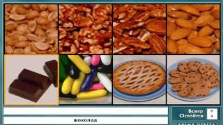 темы орехи русско-английский видеословарь | Английский язык