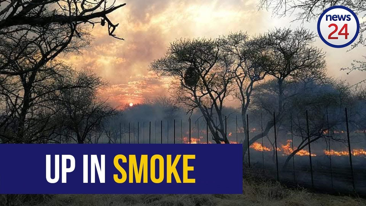 Large Wildfire Allegedly Set By Limpopo Illegal Land Occupiers Killed Game Animals - Watch Video