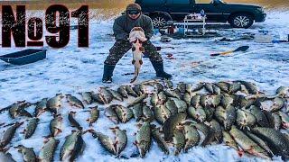 Отчеты о рыбалке казахстан зима 20017
