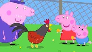Свинка Пеппа на русском все серии подряд   Пеппа и Джордж кормят кур   Мультики