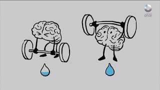 Diálogos Fin de Semana - Mitos y realidades sobre los cuidados del cerebro