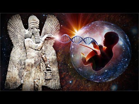 Ze hebben het gevonden!... 'Menselijk DNA is ontworpen door oude buitenaardse wezens' - rapport van wetenschappers