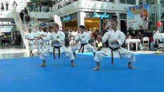 preview picture of video 'SporTeen Brno 2011: Czech Goju kata team demo'