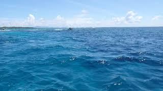 イーストパシフィック沖縄