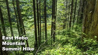 Video review of the East Hebo Summit Hike with footage of it's features and terrain.