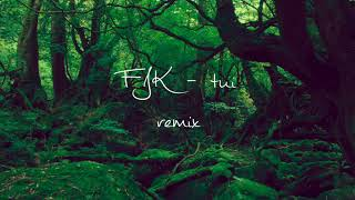 FKJ   Tui Remix