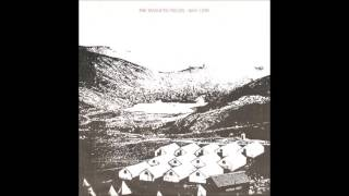 The Magnetic Fields - Why I Cry