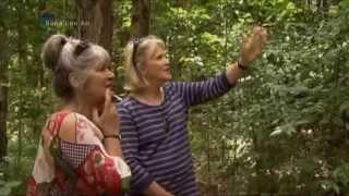 Spiritual Garden - Sculptures In The Bahai Garden