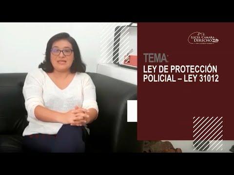LEY DE PROTECCIÓN POLICIAL - Ley 31012 - Luces Cámara Derecho 167