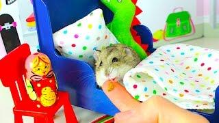 СПАЛЬНЯ ХОМЯКА дом РУМ ТУР - Хомяк и его игровой домик | Elli Di Pets