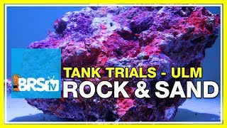 Live Rock and Sand Selection for Ultra Low Maintenance Reef Tanks | BRStv Tank Trials EP6