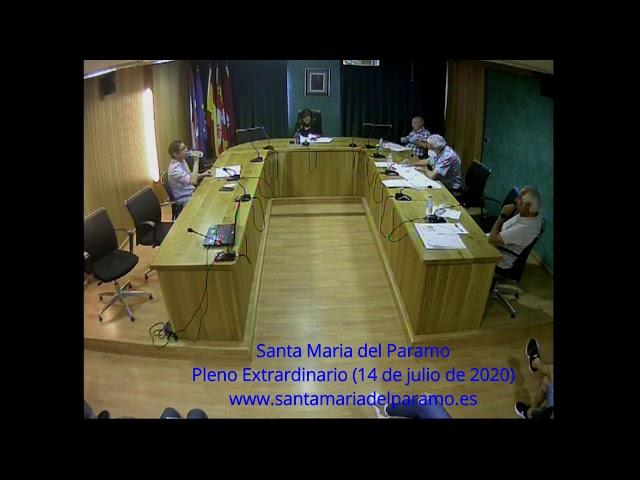 Pleno Extraordinario (14 de julio de 2020)
