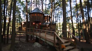 Building a Magical Dream Treehouse in Less Than a Month