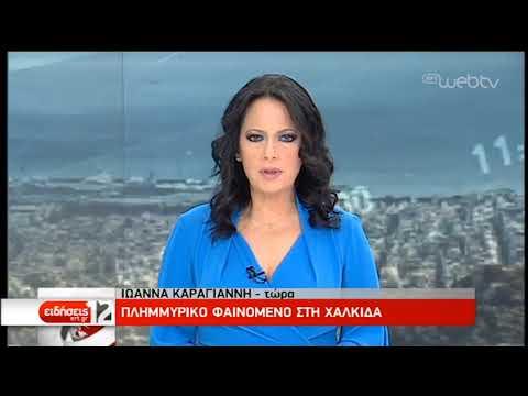 Πλημμυρικό φαινόμενο στη Χαλκίδα- Κλιμάκιο του Υπ. Υποδομών μεταβαίνει για αυτοψία | 07/03/19 | ΕΡΤ