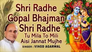 Shri Radhe Gopal Bhajman Shri Radhe, Tu Mila To Mili Aisi
