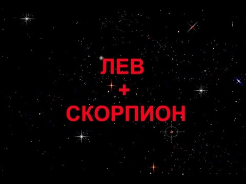 ЛЕВ+СКОРПИОН - Совместимость - Астротиполог Дмитрий Шимко