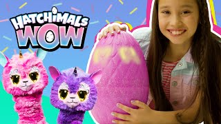 Hatchimals WOW – Unboxing & How To