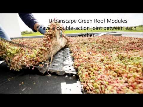 Urbanscape DIY   How To Install A Green Roof