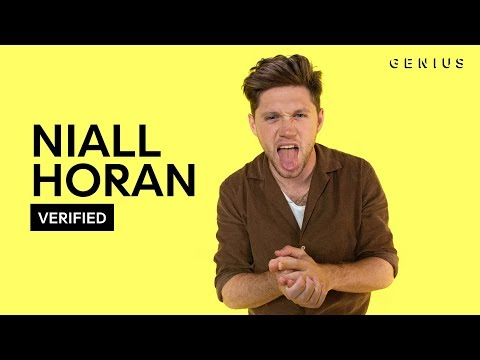 "Niall Horan ""Nice To Meet Ya"" Official Lyrics & Meaning | Verified"