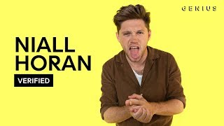 "Niall Horan ""Nice To Meet Ya"" Official Lyrics & Meaning 