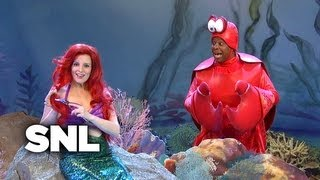Princess and Crabby Find Osama bin Laden's Corpse Below the Waves - SNL