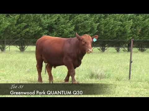 GREENWOOD PARK QUANTUM Q30 GWPQ30