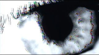 Elohim & Whethan   Sleepy Eyes (Lyric Video)