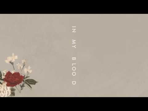 "Shawn Mendes ""In My Blood"" (Audio) - Shawn Mendes"